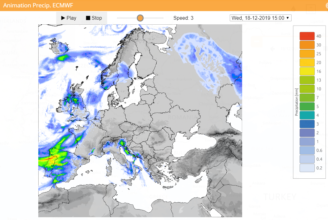 ECMWF precipitation forecast for one of the assessed flood events.
